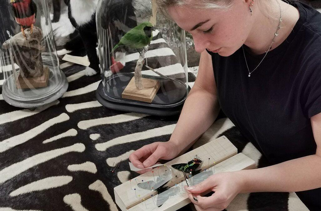 Pilot project: Missiemuseum en Bouten & Zoon organiseren workshops preparen